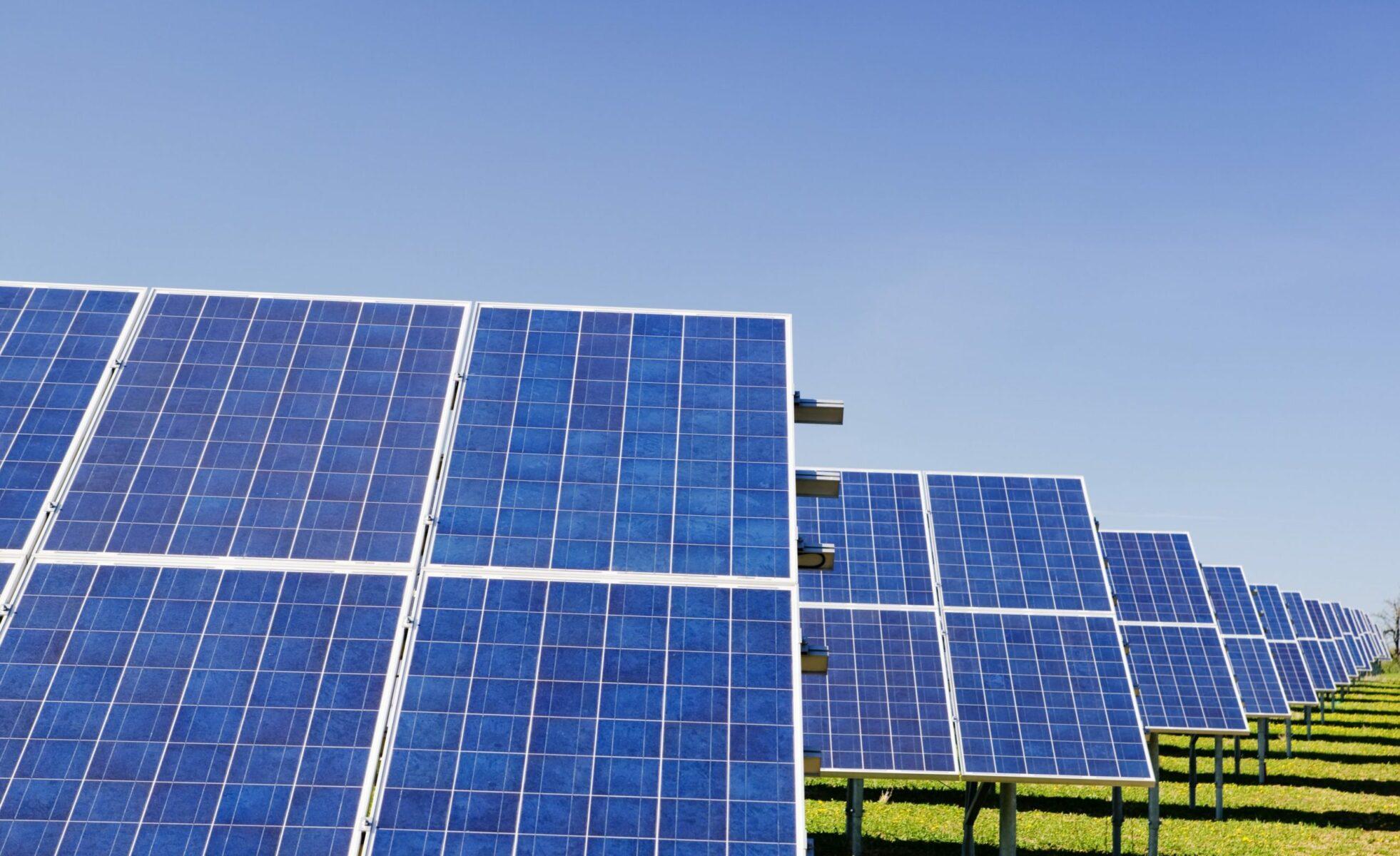 future trends solar punks and zero waste