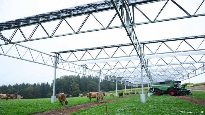 Energy Revolutions - Solar Farms and Renewables
