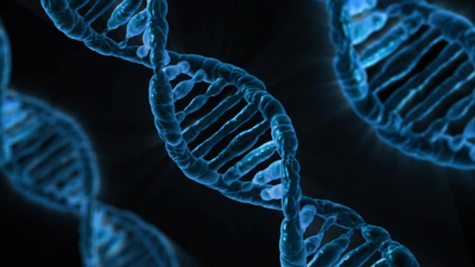 Future Trends – Create Fashion with Human DNA