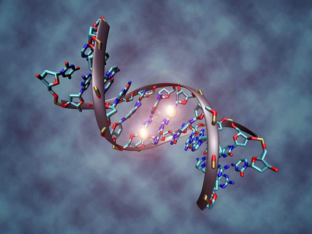 Future Trends: Storing Data in DNA, and VR Drugs