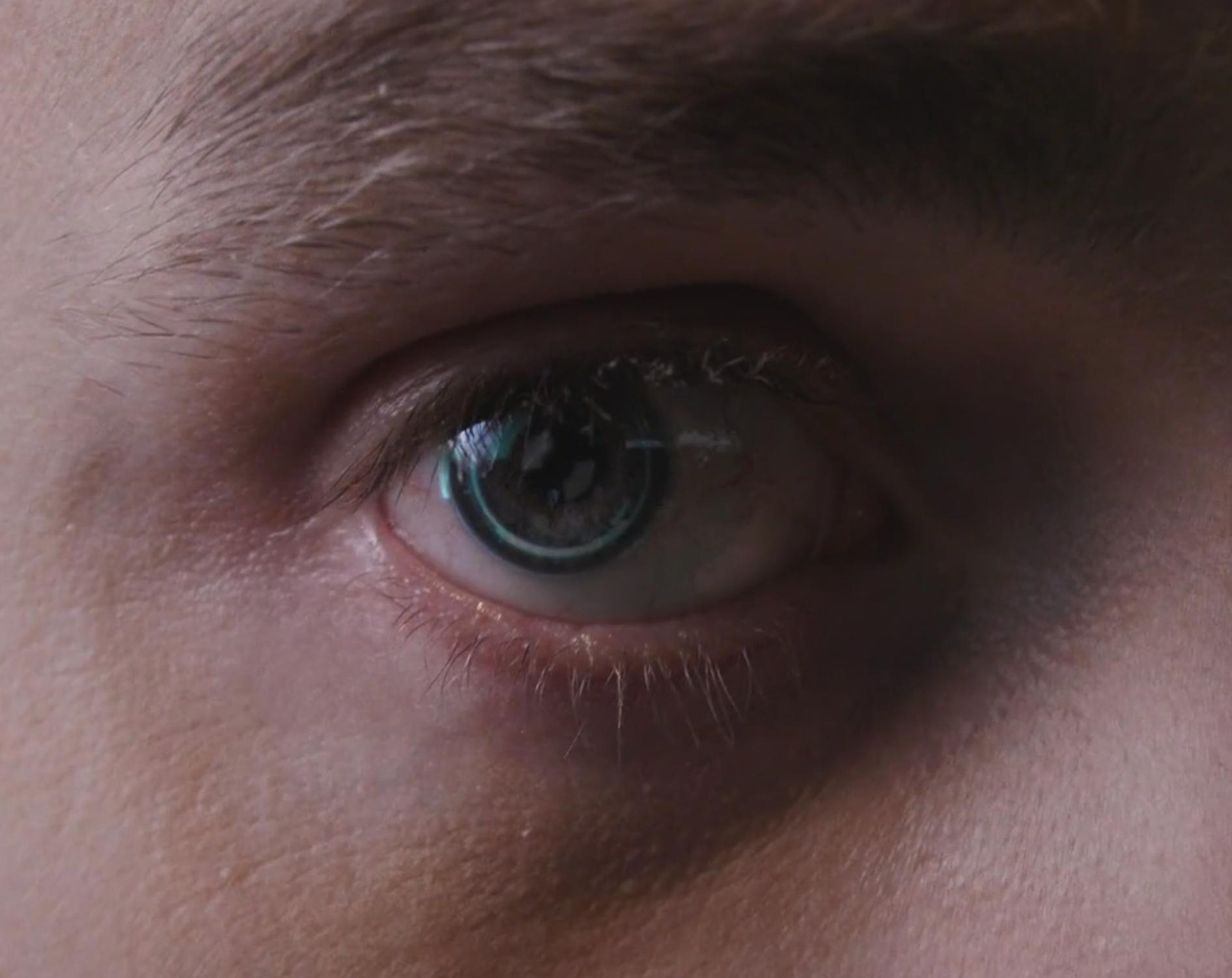 Strange Beasts' Strange Augmented Reality Vision