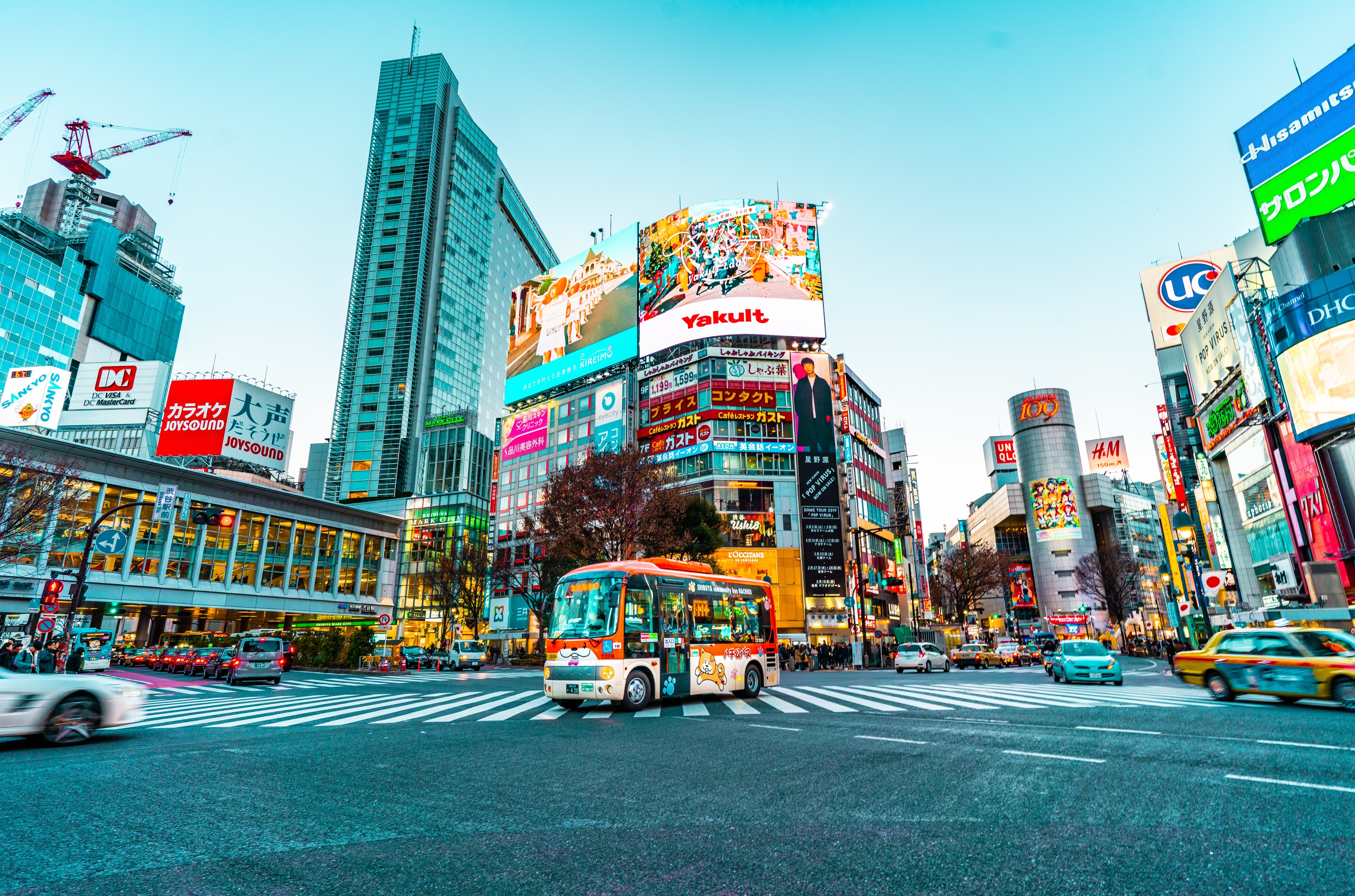tokyo the model megacity